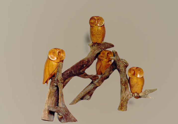 Bird carvings saw whet owl royal tern